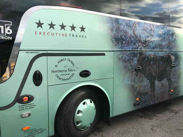Northern Star Coach Branding With Deer