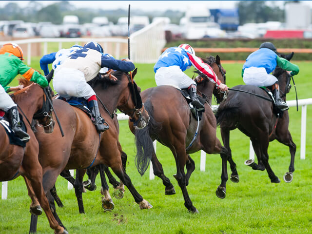 MON 26th August (Bank Holiday) Cartmel Races Adult £16.50 Child £11.50